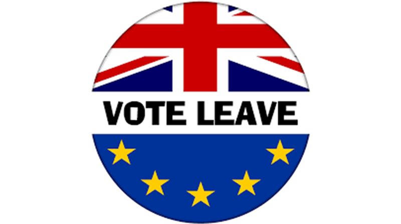 Badge, Brexit-Referendum, 2016